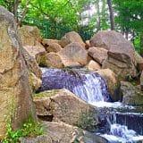 【東京23区の森散歩】蚕糸の森公園:杉並区