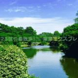 【東京23区の森散歩】新宿御苑:新宿/渋谷区
